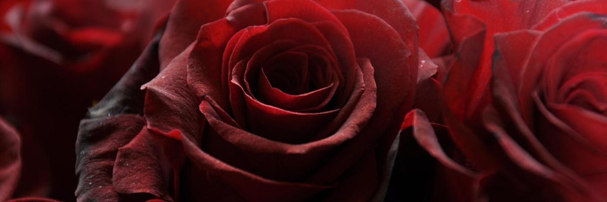 rosso-passione-c9f207a6-920a-401e-ab88-e613664a0aa0.jpg