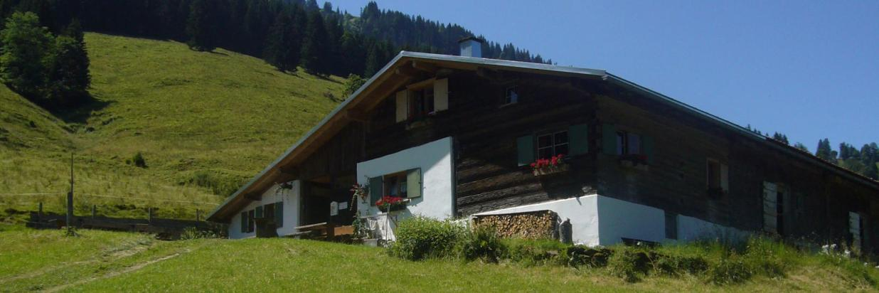 Alpe am Hochgrat.JPG