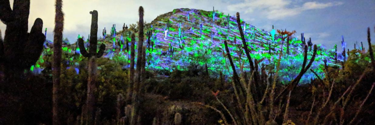 190423 Desert Botanical Garden light show (21).jpg