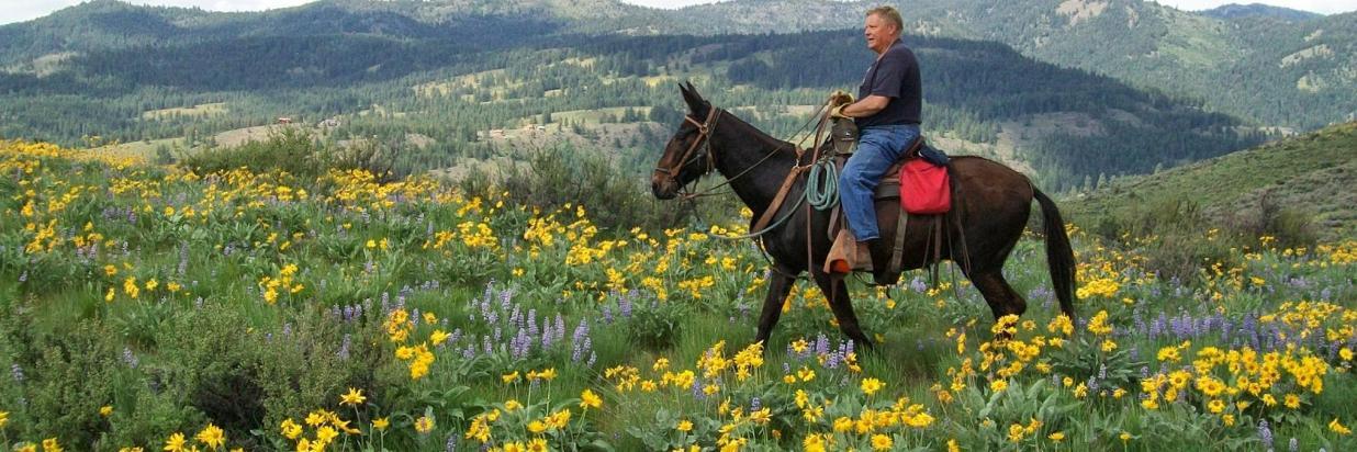 Back Country Horseman.JPG