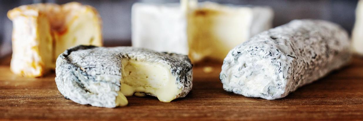 Käse groß.jpg