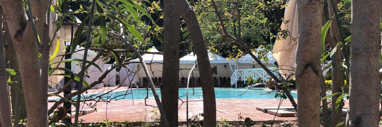 Hotel Agave erbjuder