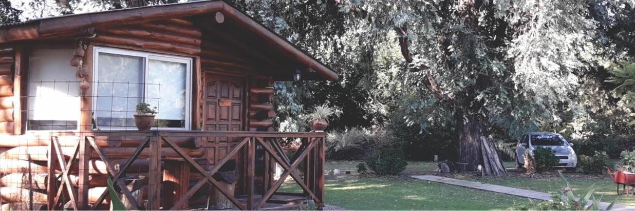 cabaña -3- 1236.png