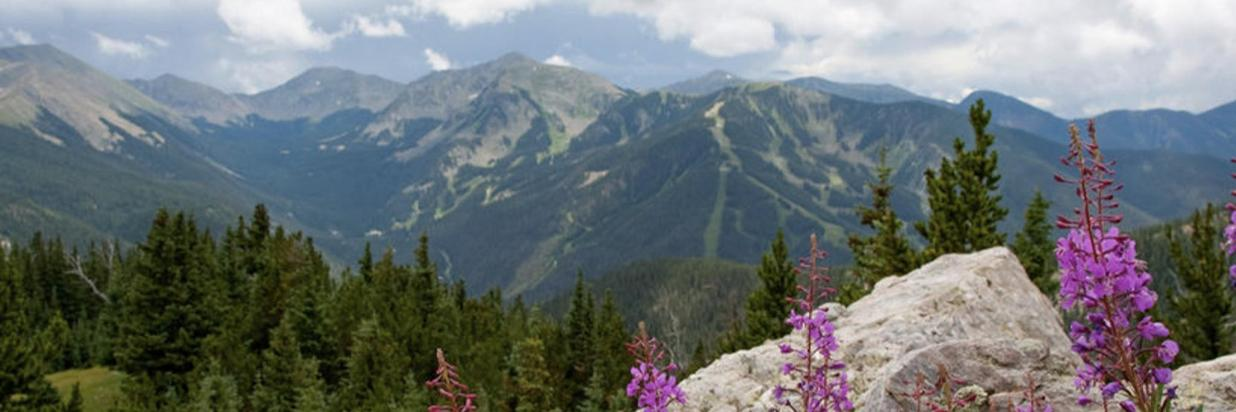 Taos Ski Valley is gorgeous in the summer