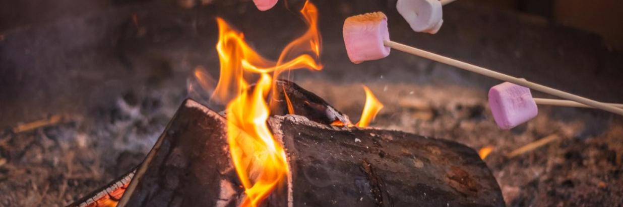 Activités- Guimauves et feu de camp.jpg