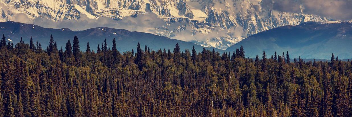 bigstock-McKinley-peak-69936142.jpg