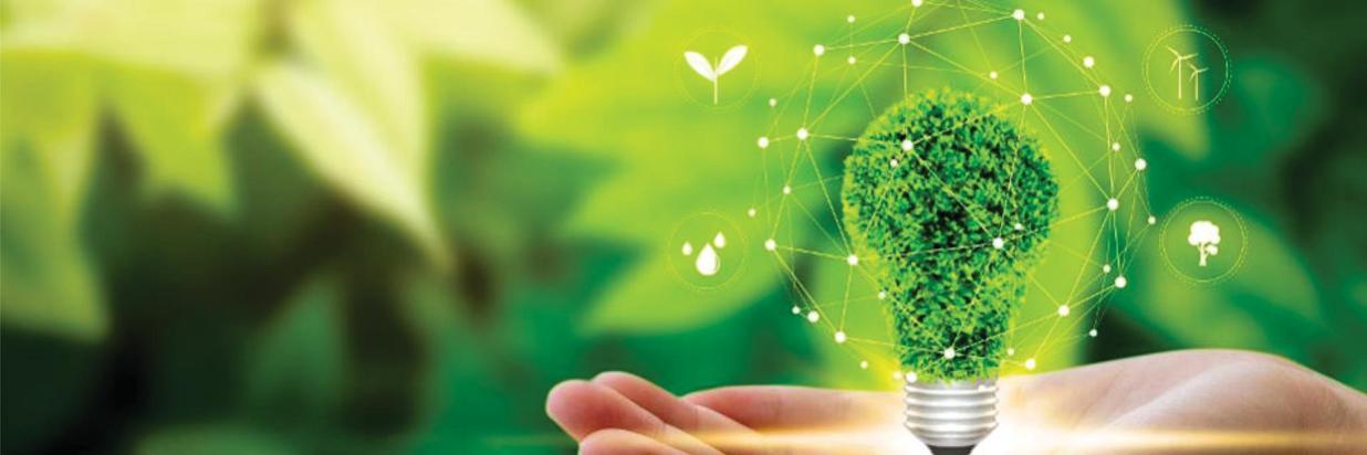 sustentabilidad2.jpg
