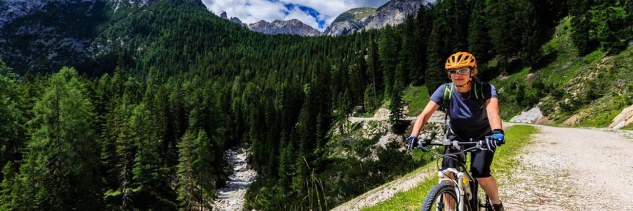 Mountainbike Bergpanaorama.jpg
