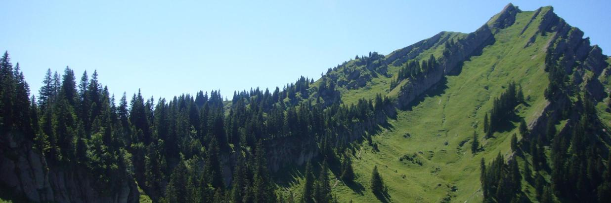 Gipfel Rindalphorn.JPG