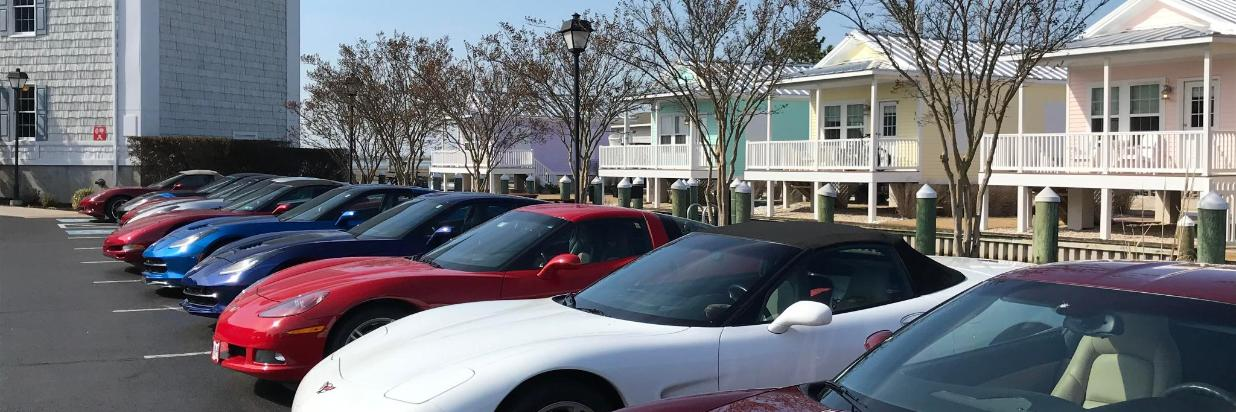 Car Line Up.jpg