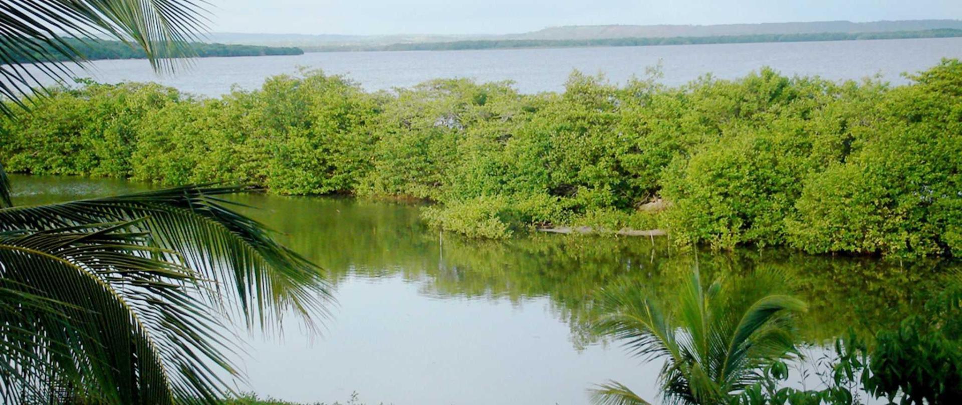hotel-playa-manglares-isla-baru-room-3-01.jpg