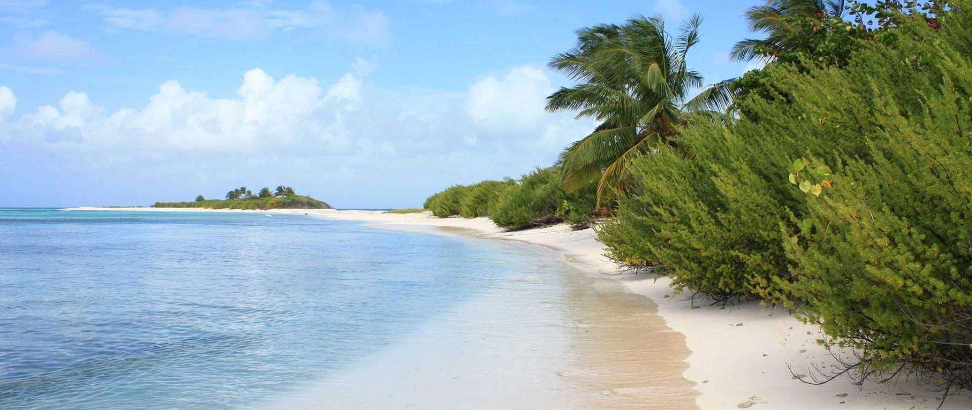 uninhabited_island_cayo_bolivar-1.jpg