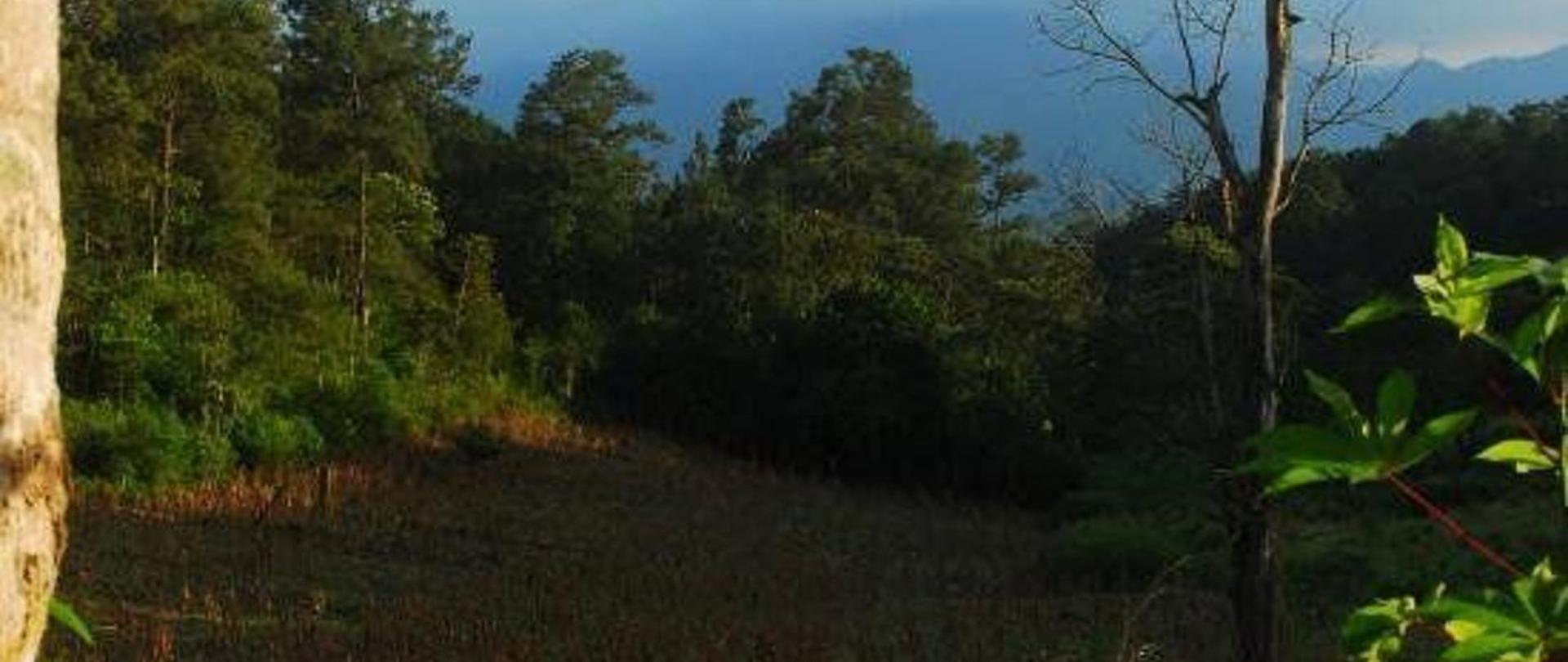 ecofinca-luna-del-puente.jpg