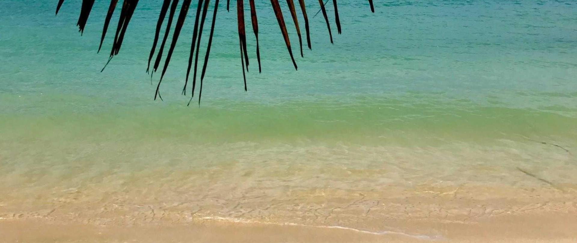 Beach @ Sparrow's.jpg