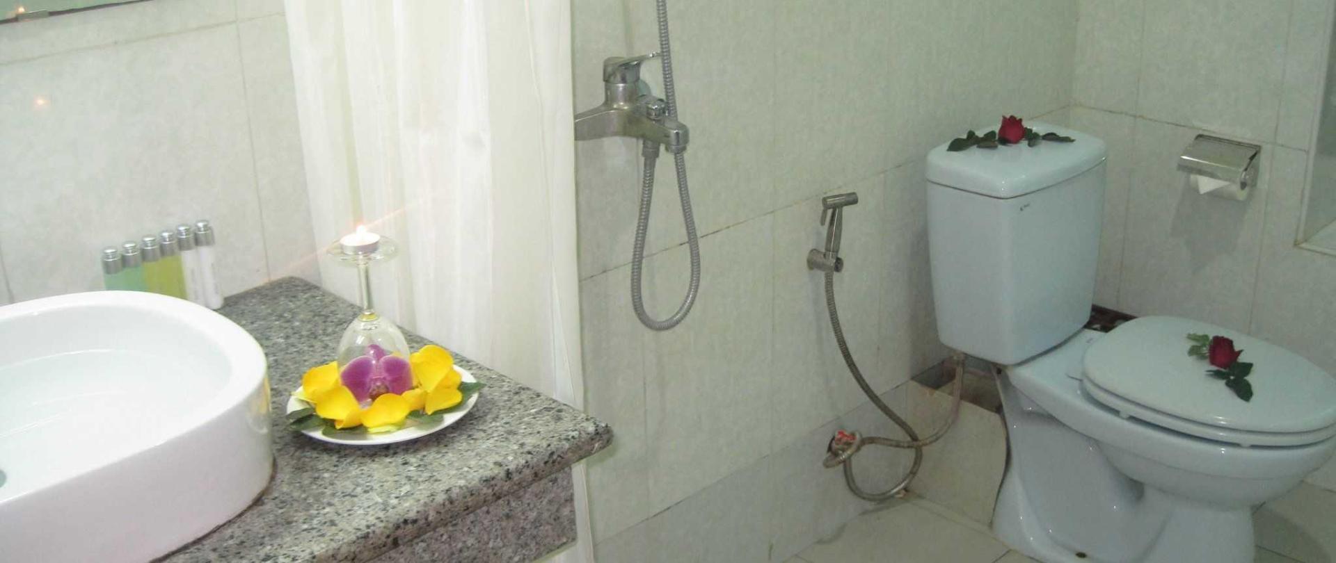 superior-toilet.JPG
