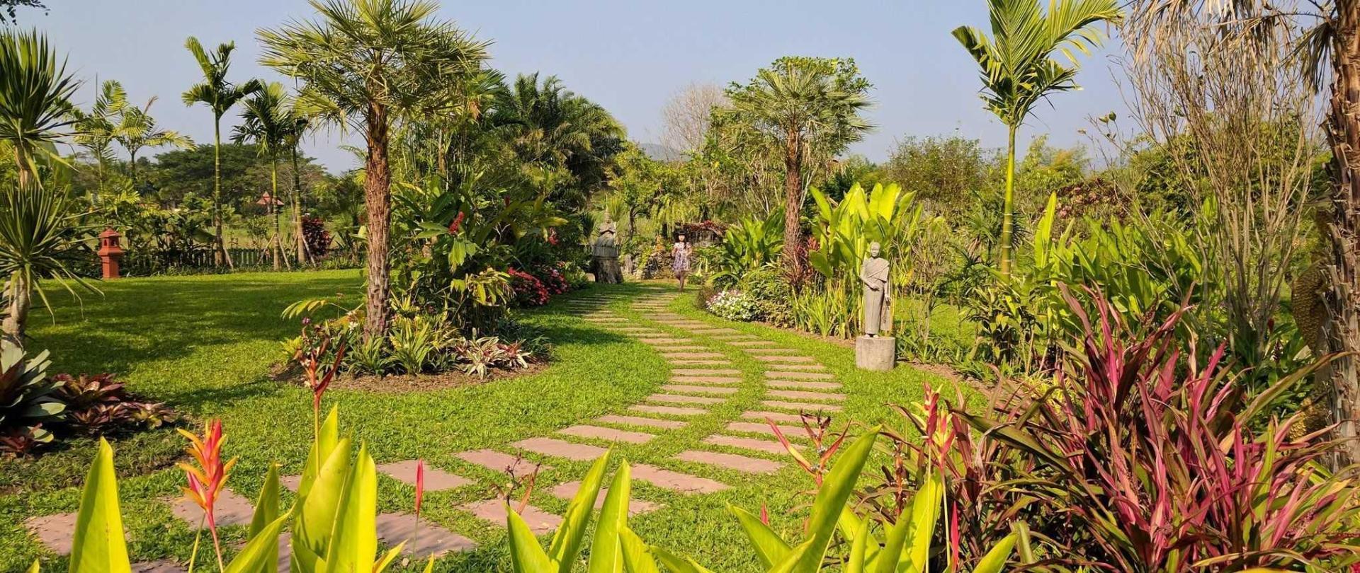 echo-in-the-garden.jpg
