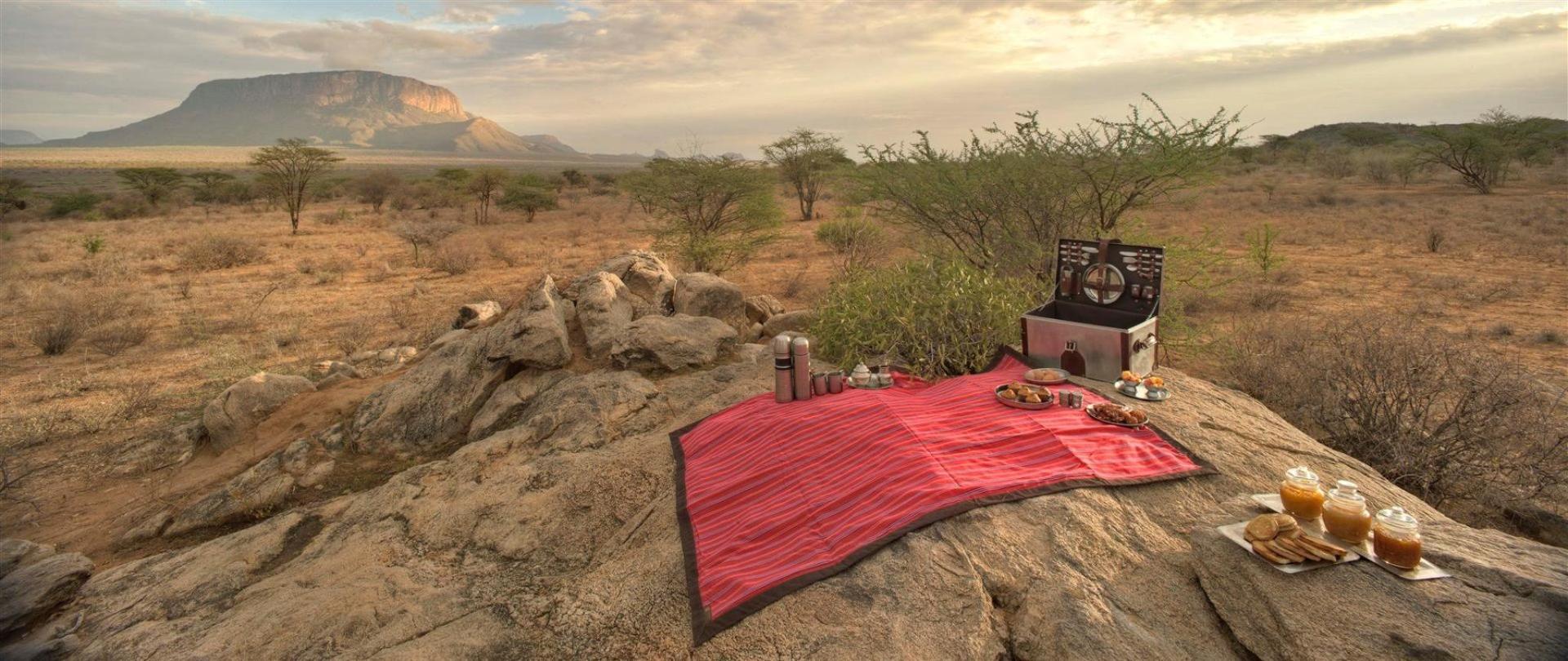 picnics-in-the-wilderness.jpg