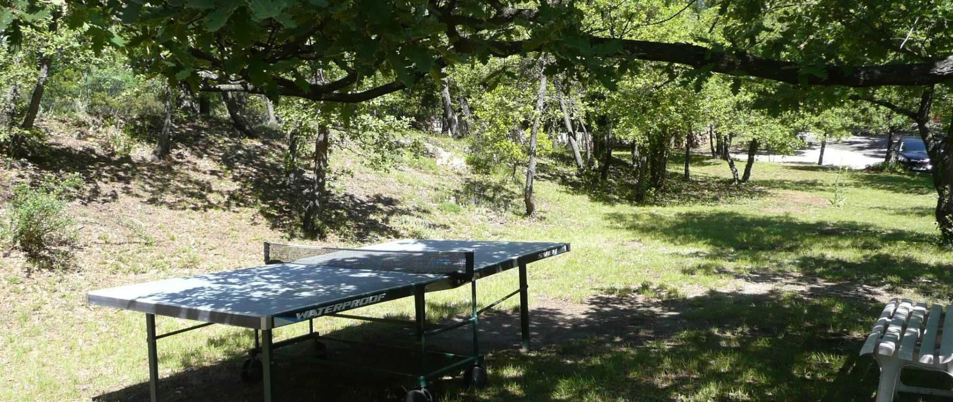 Table de ping pong.JPG