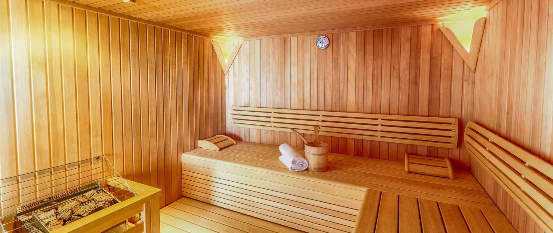 3-1-sauna-bellevue.jpg