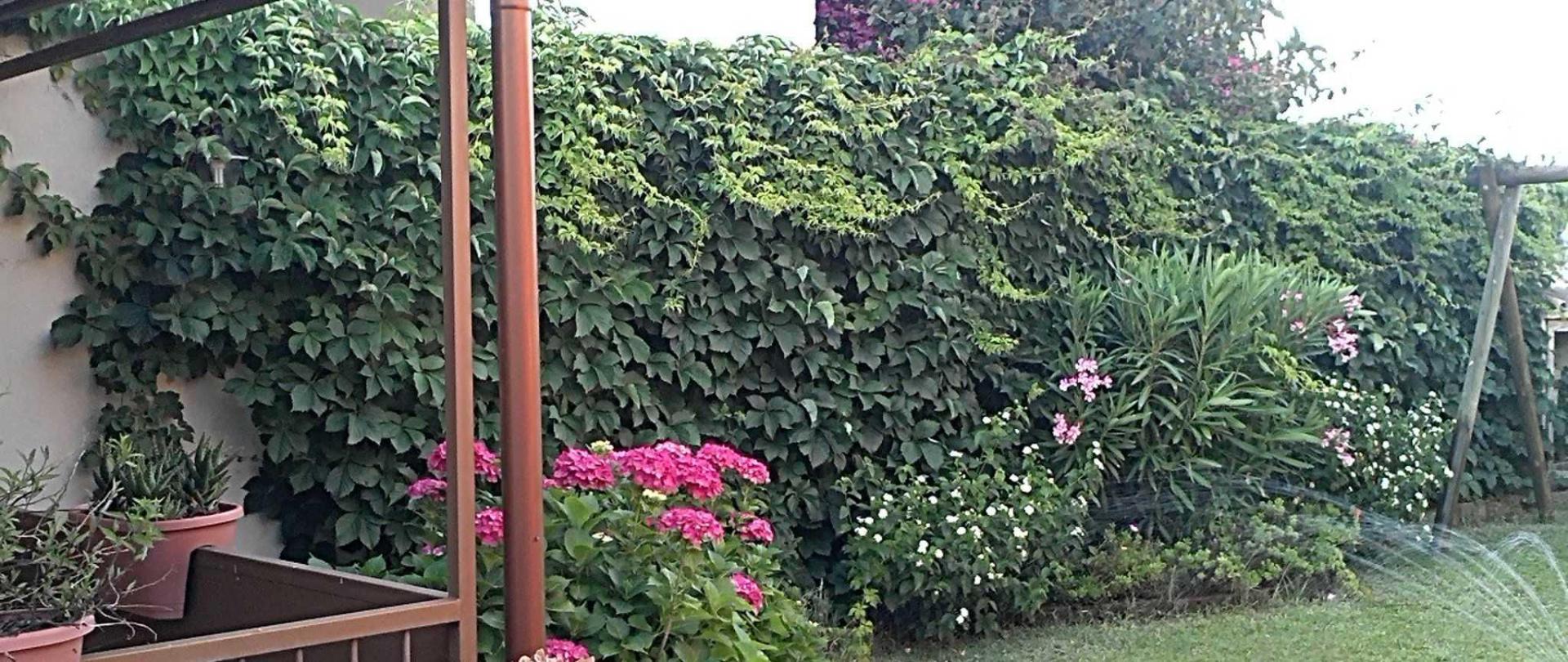 giardino-4.jpg