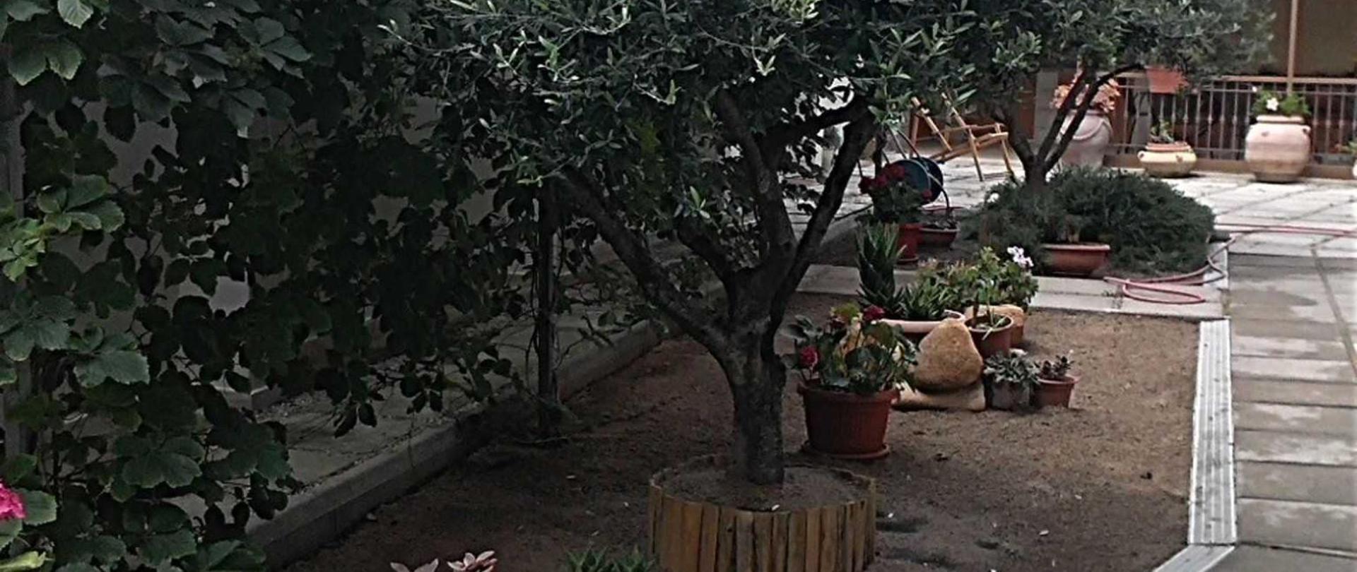 giardino-6.jpg