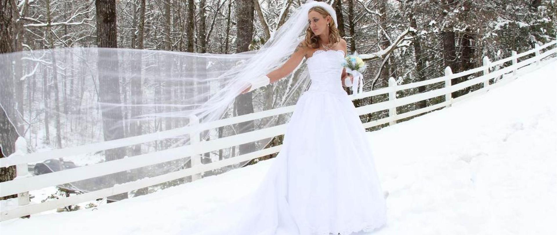 bride-in-the-winter-breeze.jpg.1140x481_default.jpg