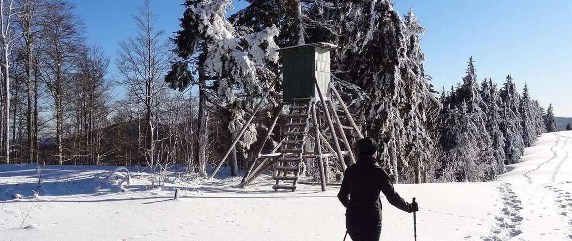 schneeschuhlaufen3-1.jpg