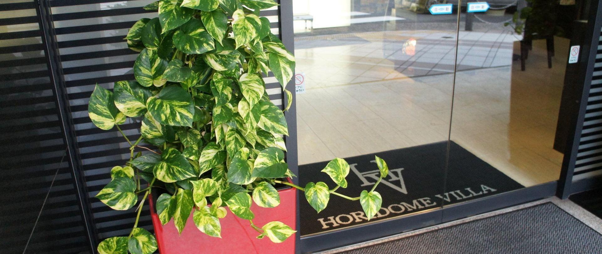 Official Website Hotel Horidome Villa Tokio Japan