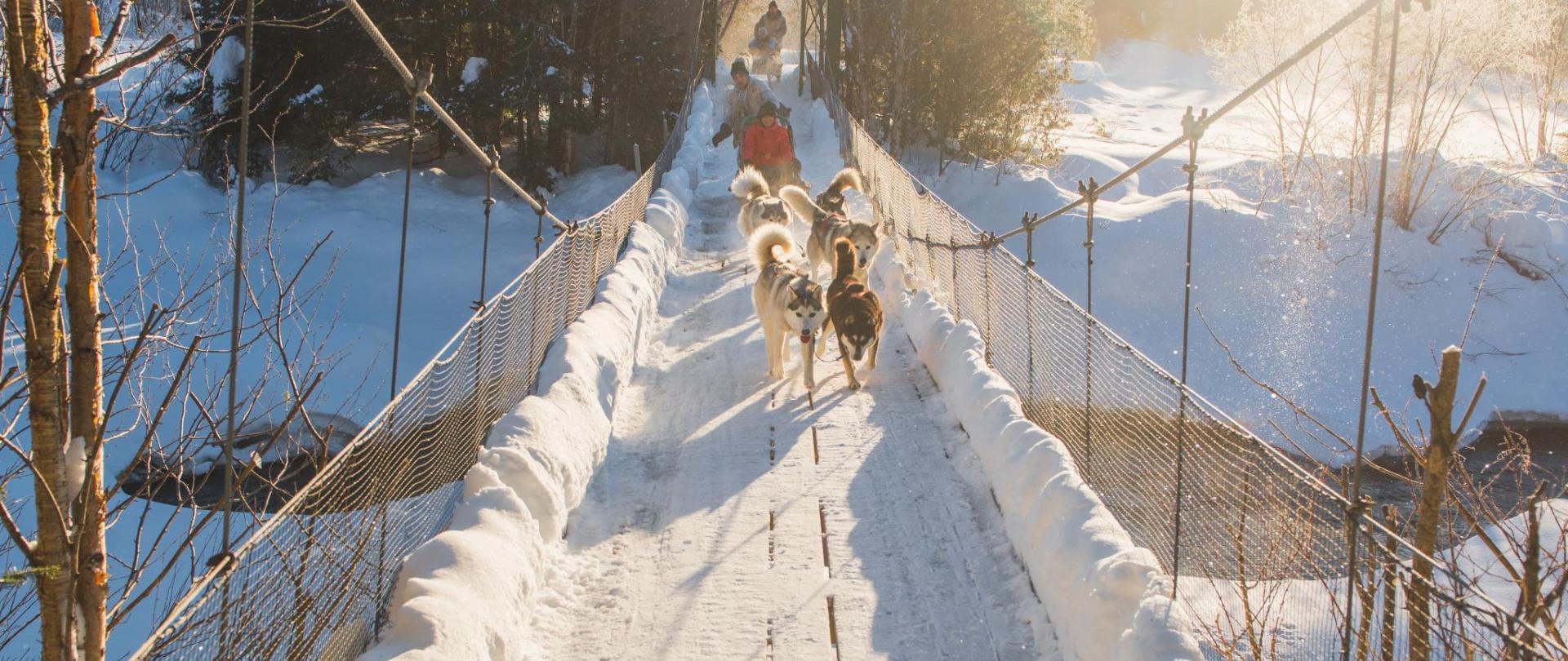 0283_Traîneau_à_chien_Dogsled_ride_SZ-biy500Aaf6DfyyJTh2ms18q0ABlZBh.jpg