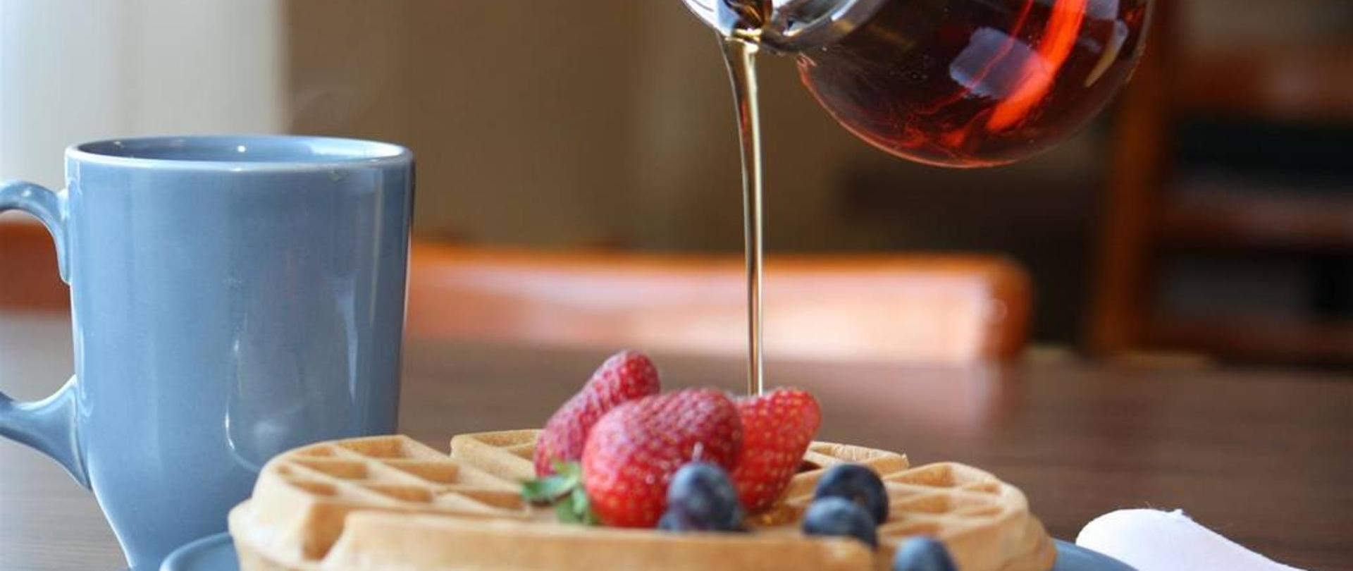 01-delicious-waffles-with-syrup.JPG.1024x0.JPG
