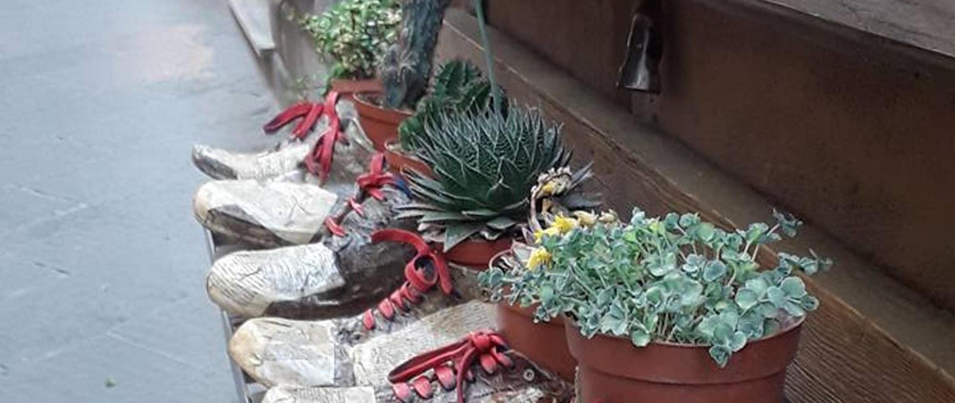 scarpe con piante.jpg