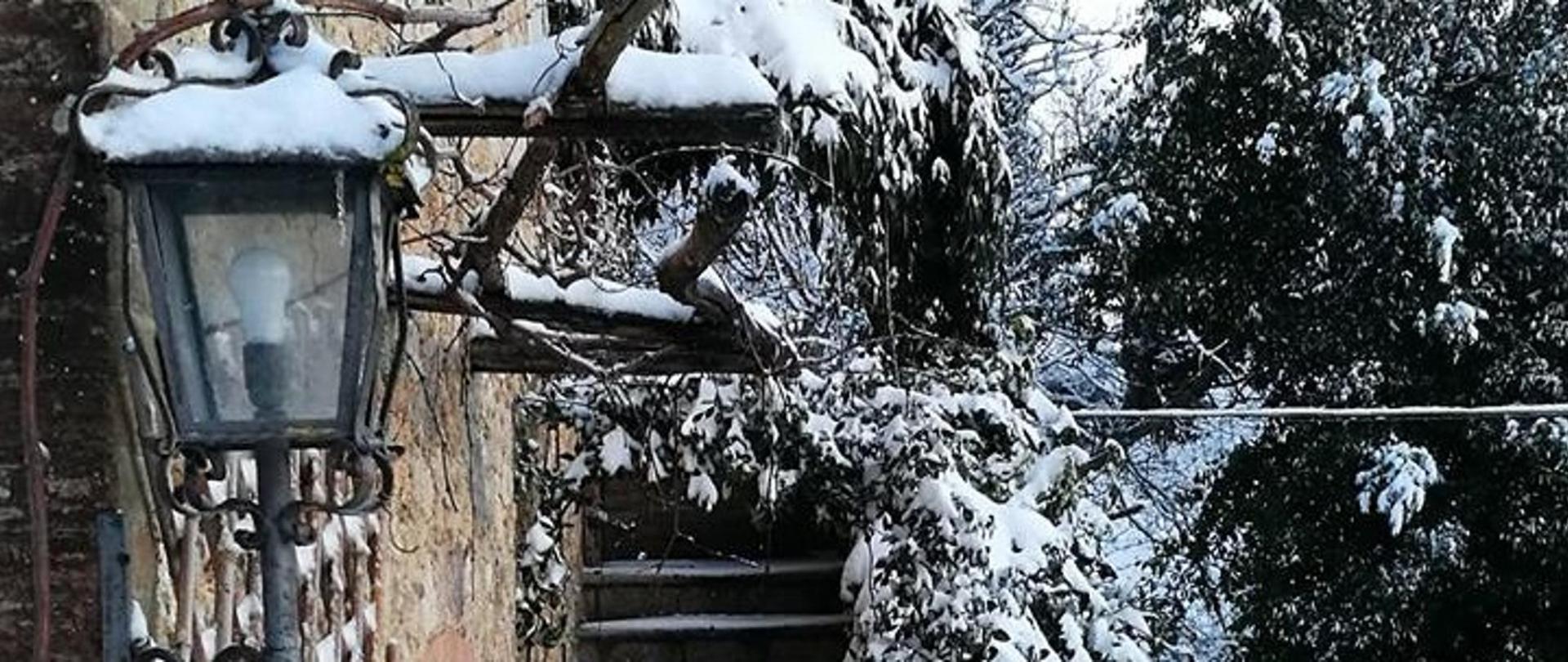 colom e neve.jpg