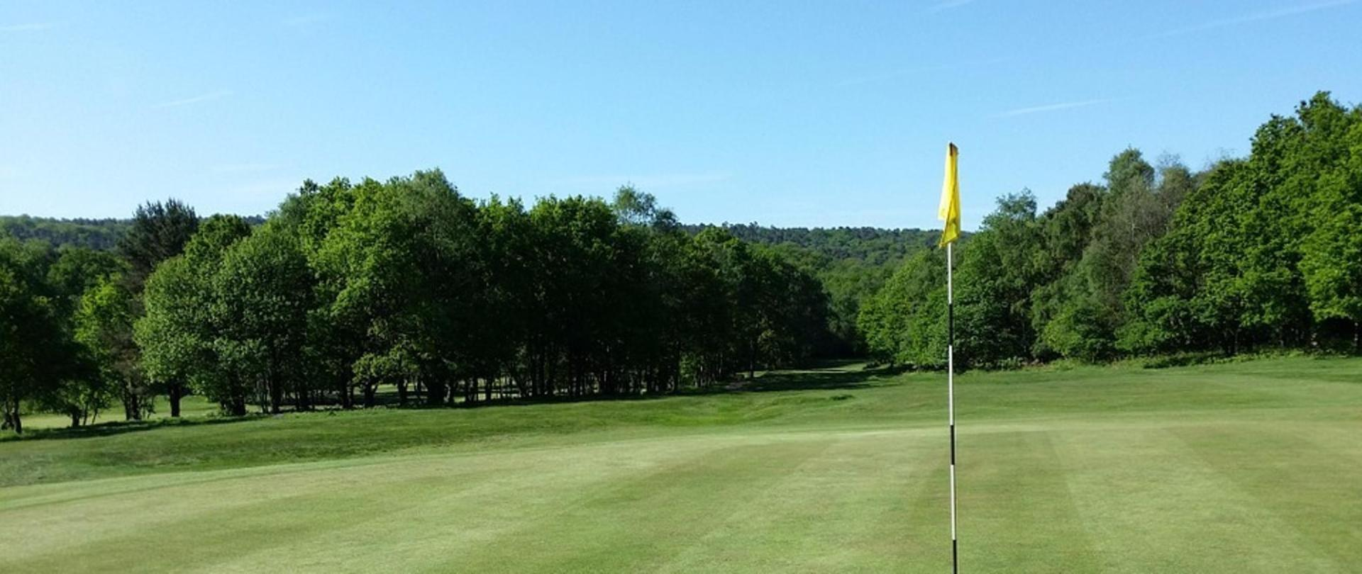 golf-787464_960_720 (1).jpg