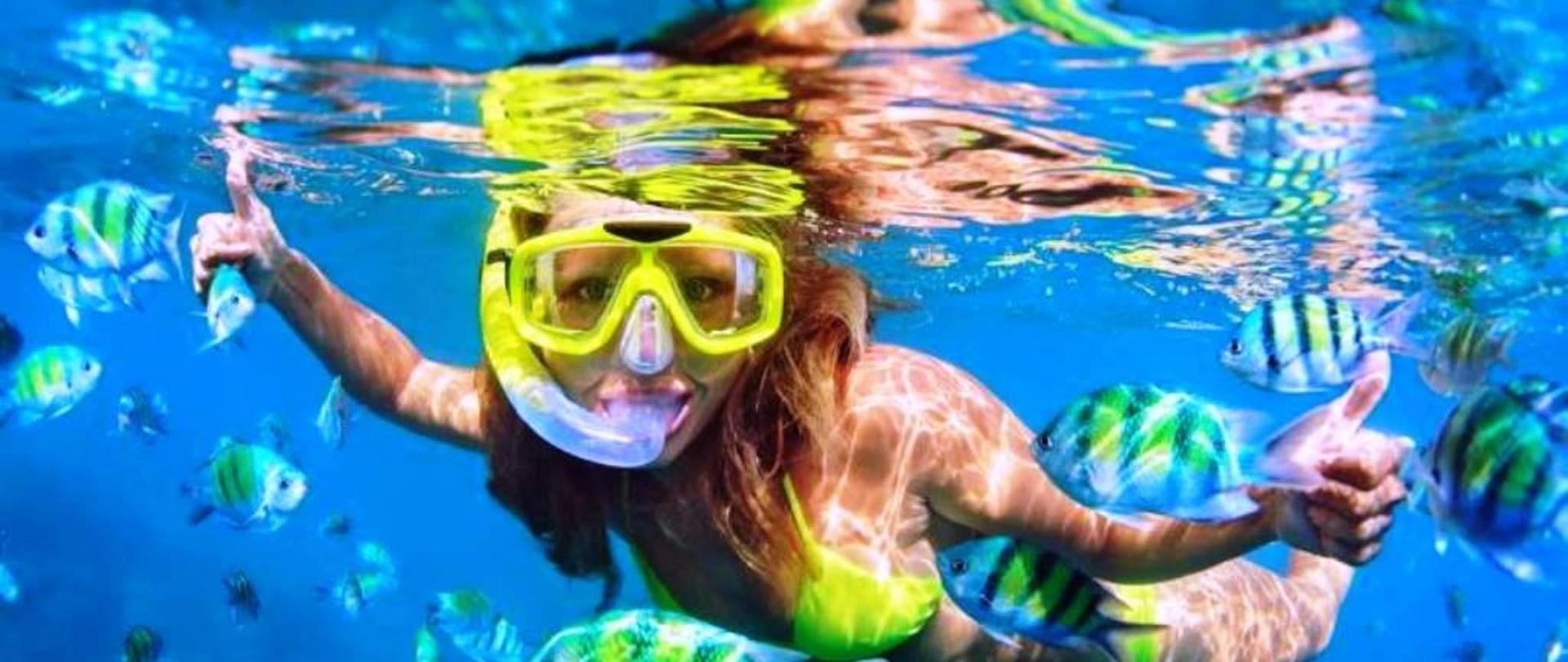mergulho-com-snorkel-15a3228d8d4265-large.jpg