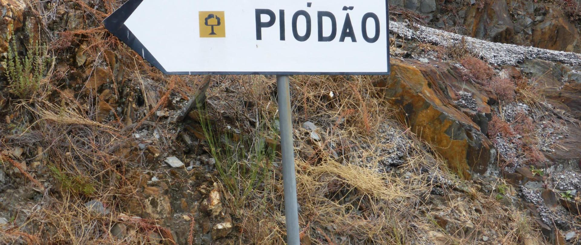 P1010114.jpg