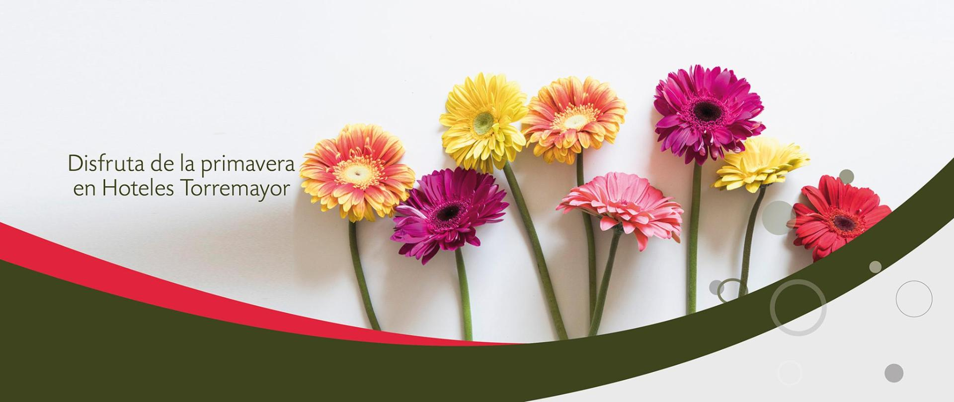 banner-primavera-01.jpg