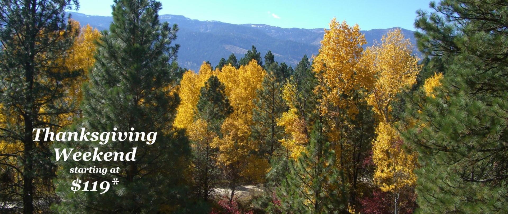 Fall-Forest-119.jpg