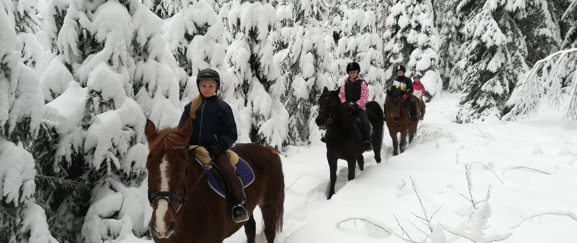 Paardrijden in de sneeuw!.jpg