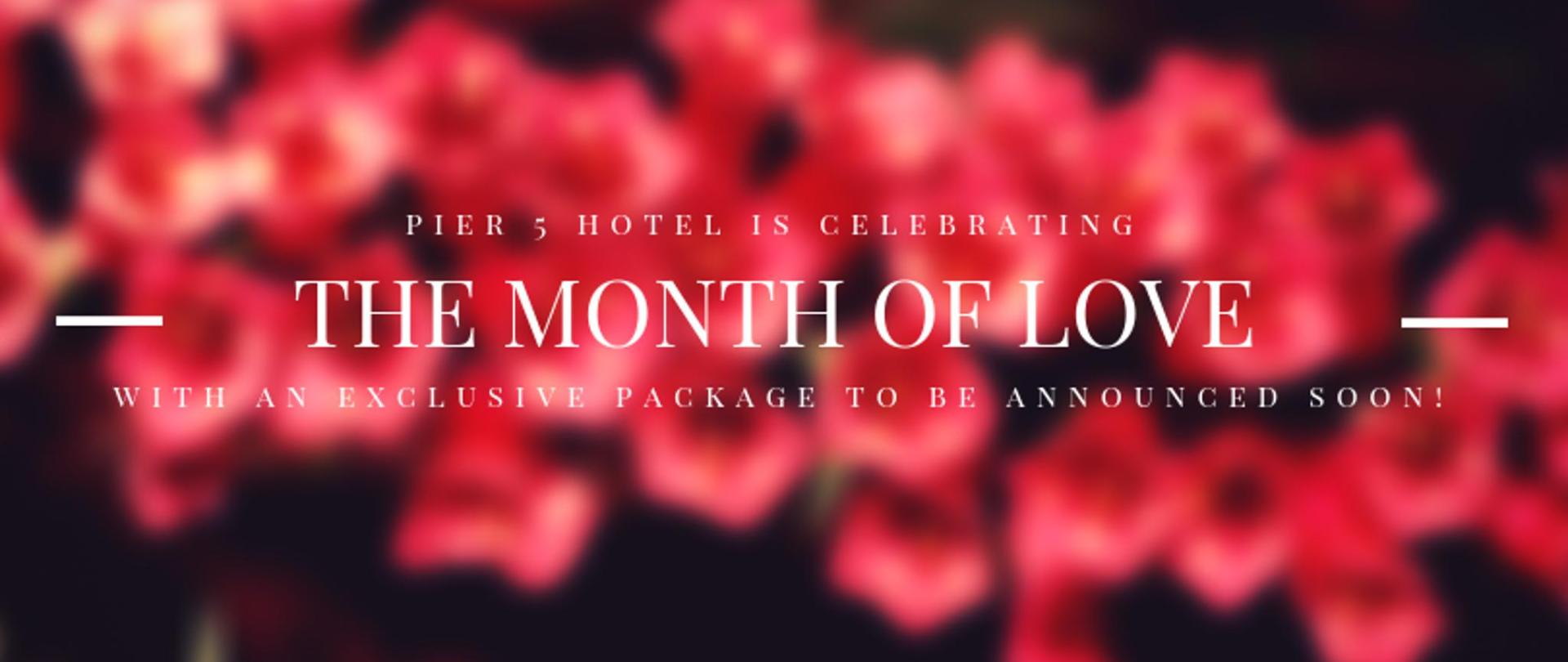 Pier 5 Hotel Month of Love FINAL.png