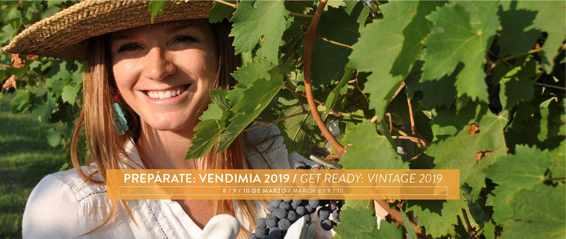Vendimia 2019.png