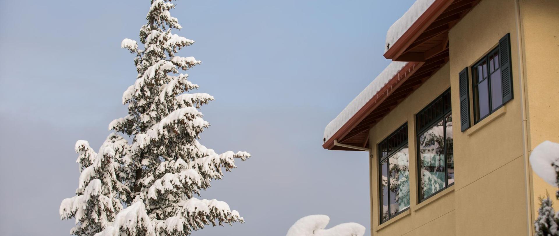 CCV Snow-8.jpg