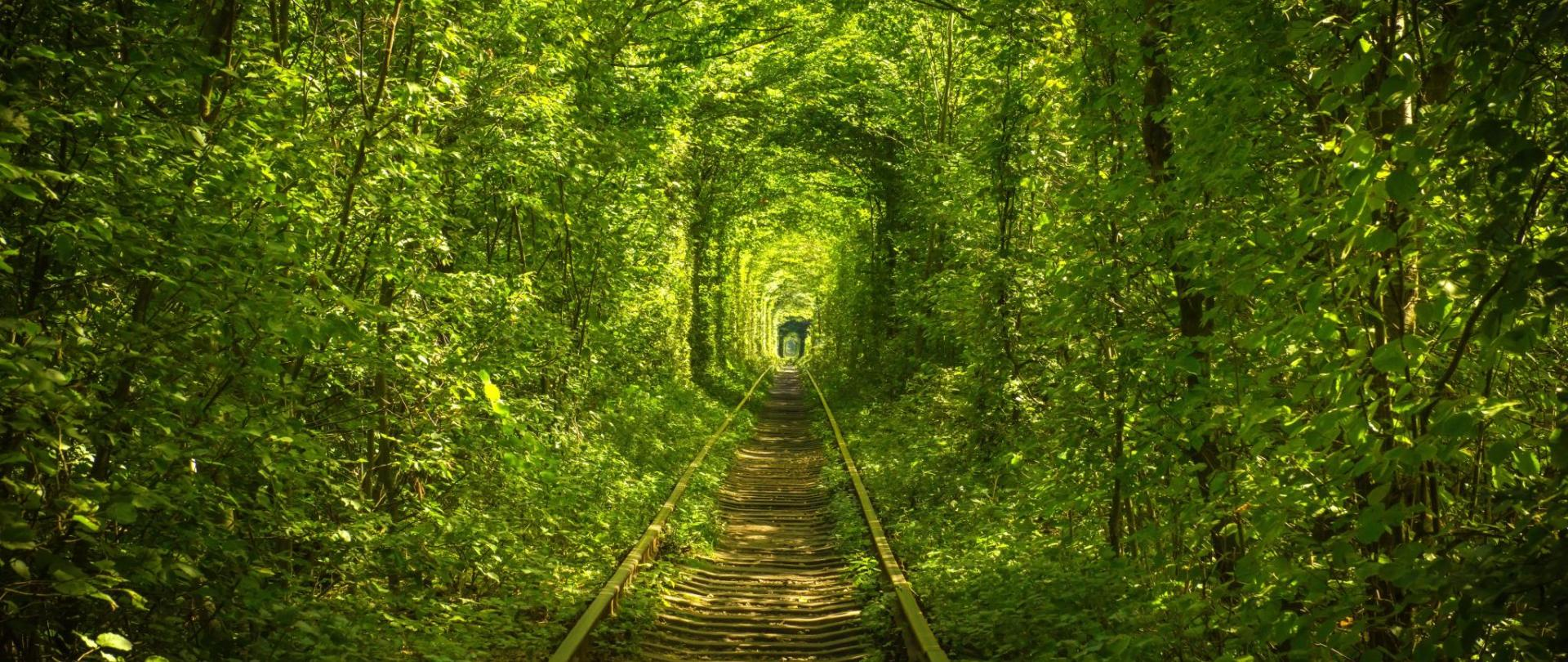Hotel Tunnel of Love