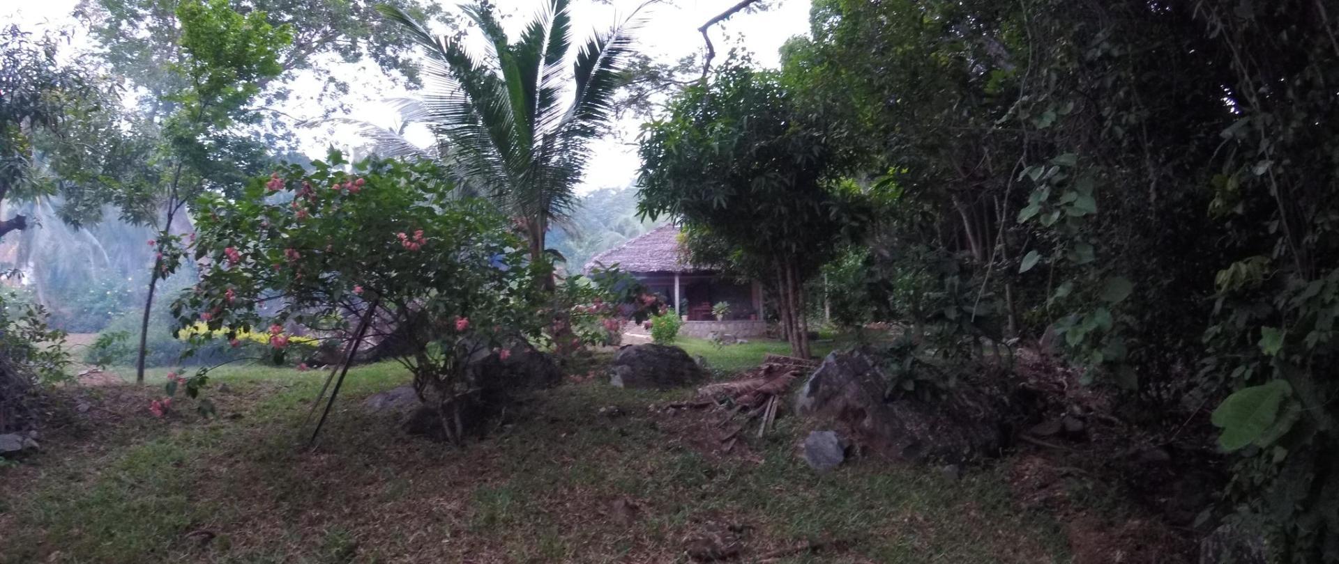 Les Jardins d'Ankify