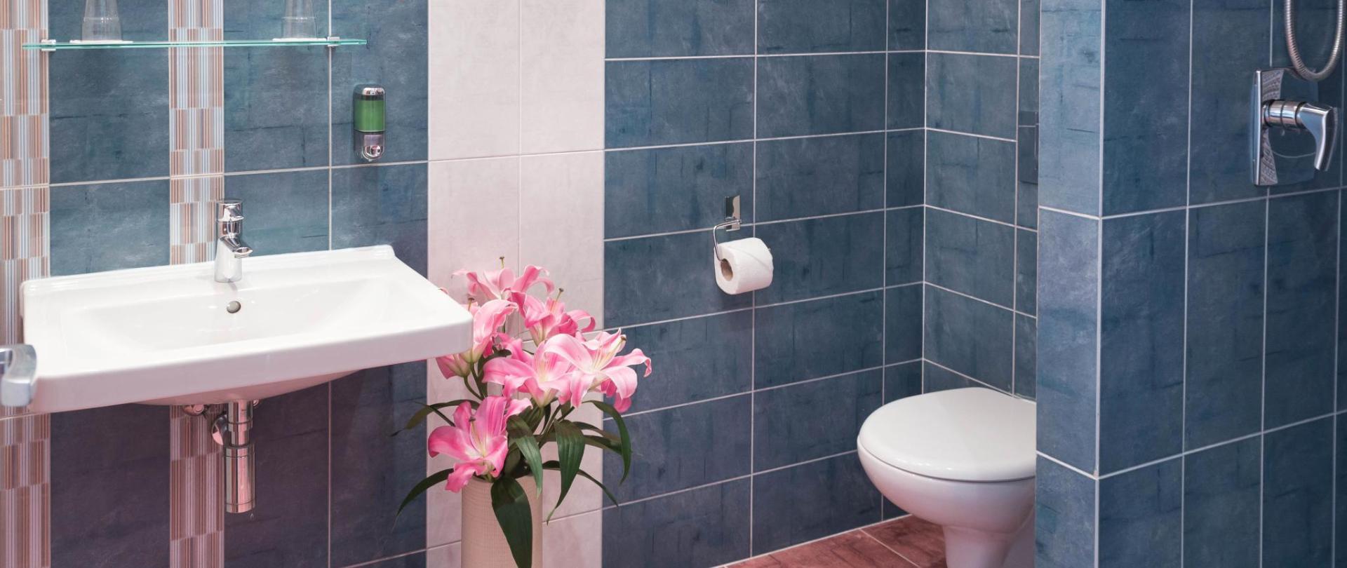 koupelna 1 8929.jpg