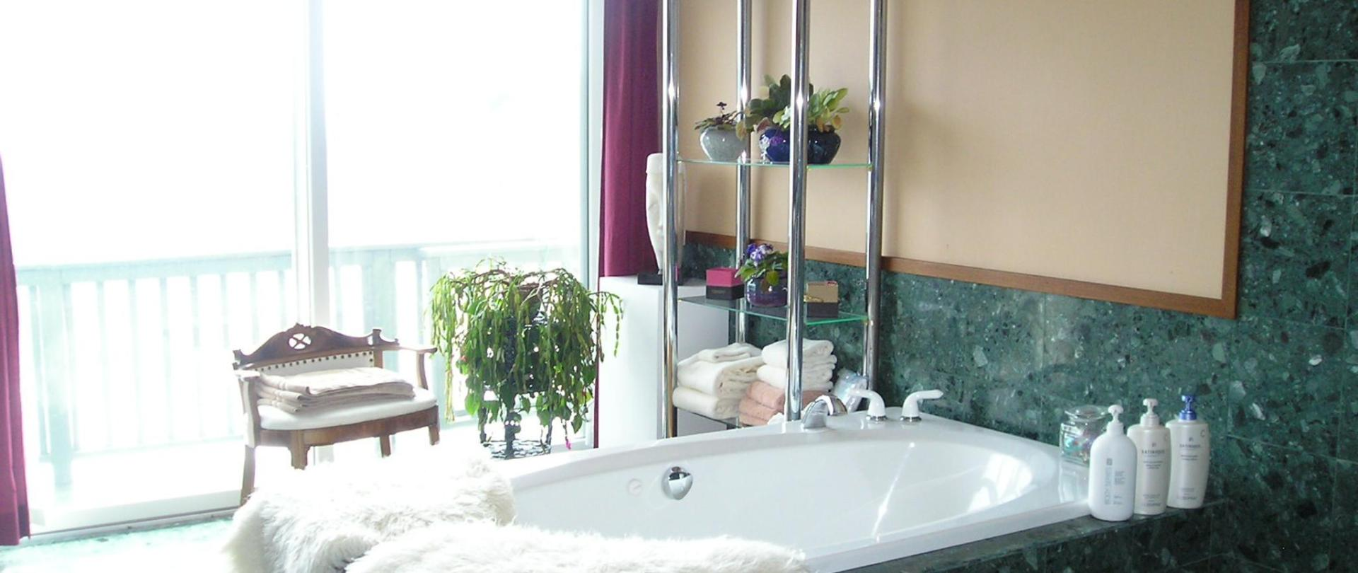 Coppertoppe room-Garnet suite bath w view .jpg