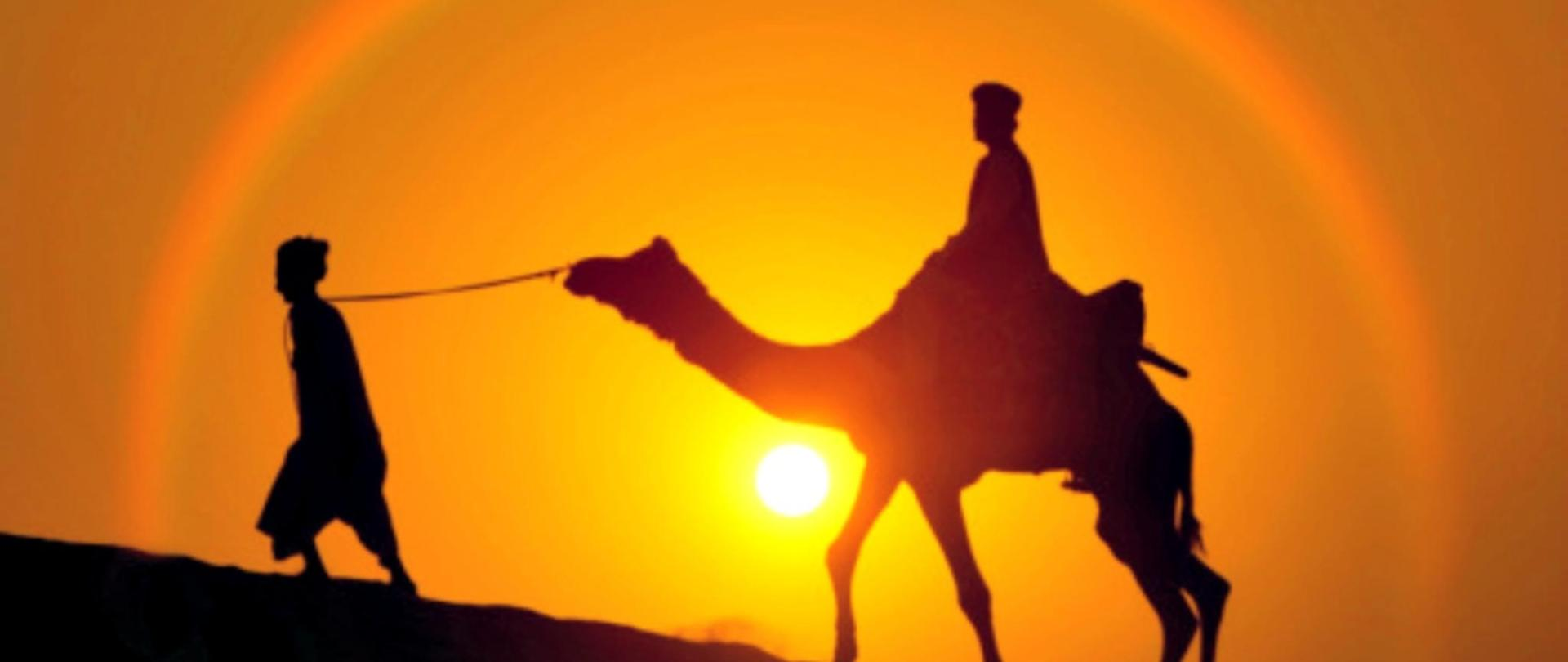 camel safri sunset time.jpg