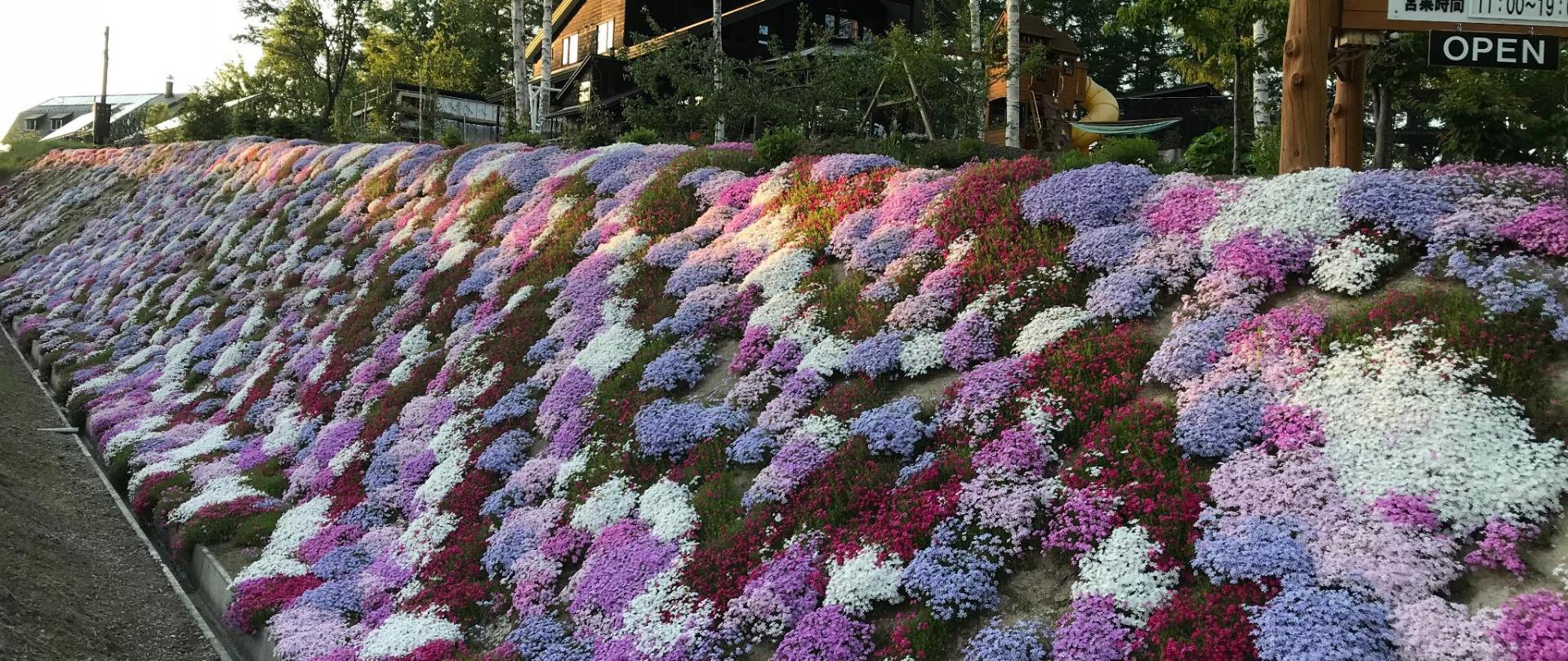 リッツ ガーデン 虹
