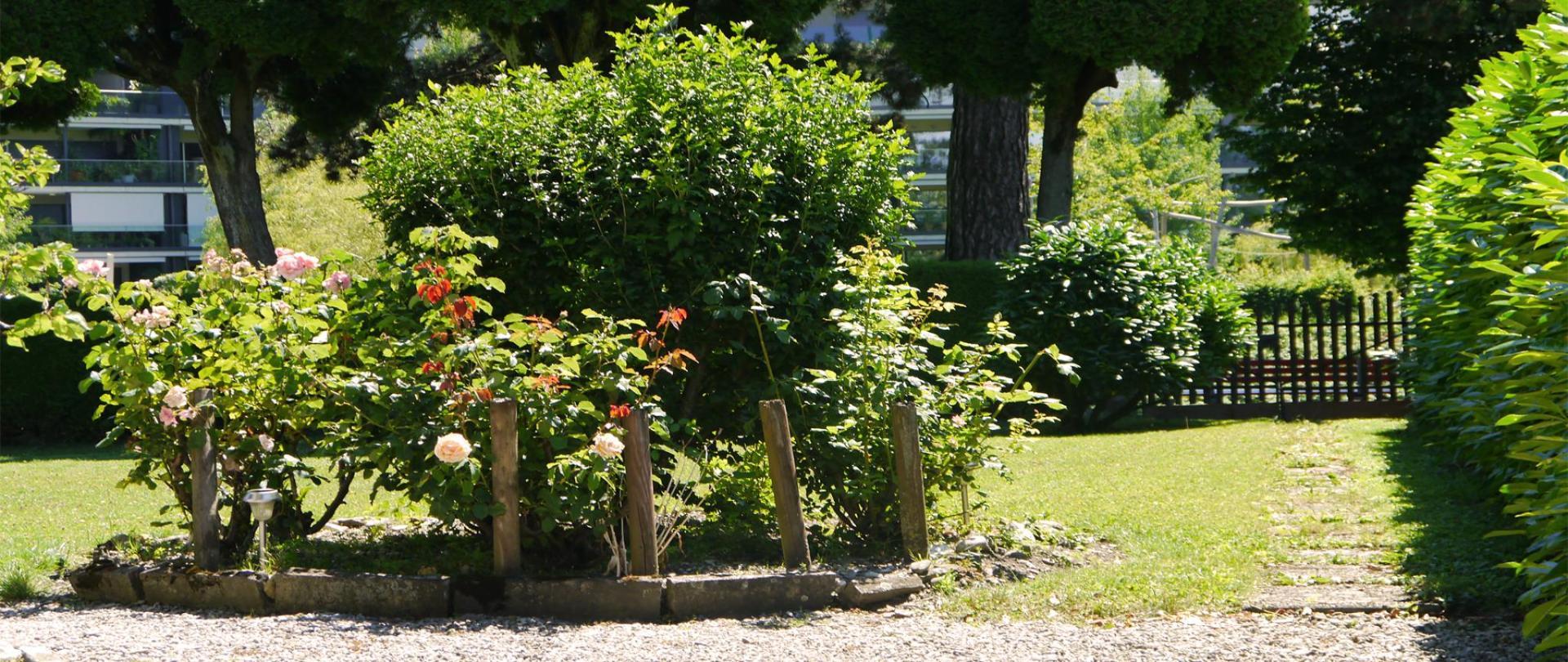 Garten 3.jpg