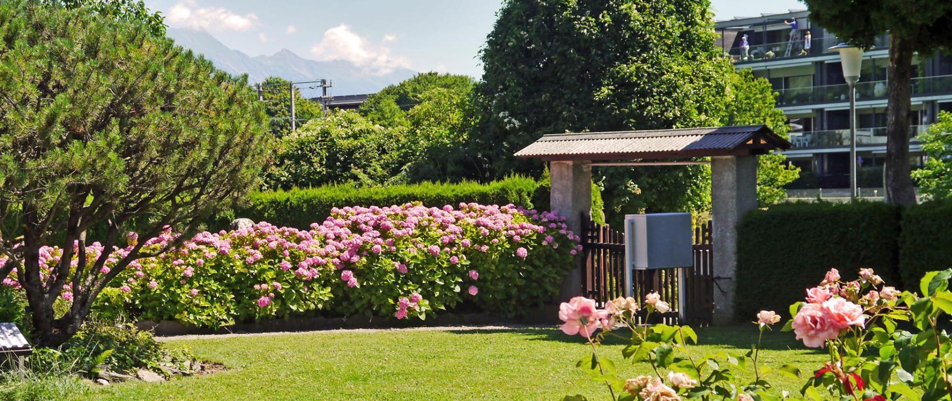 Garten Vorn 1.jpg