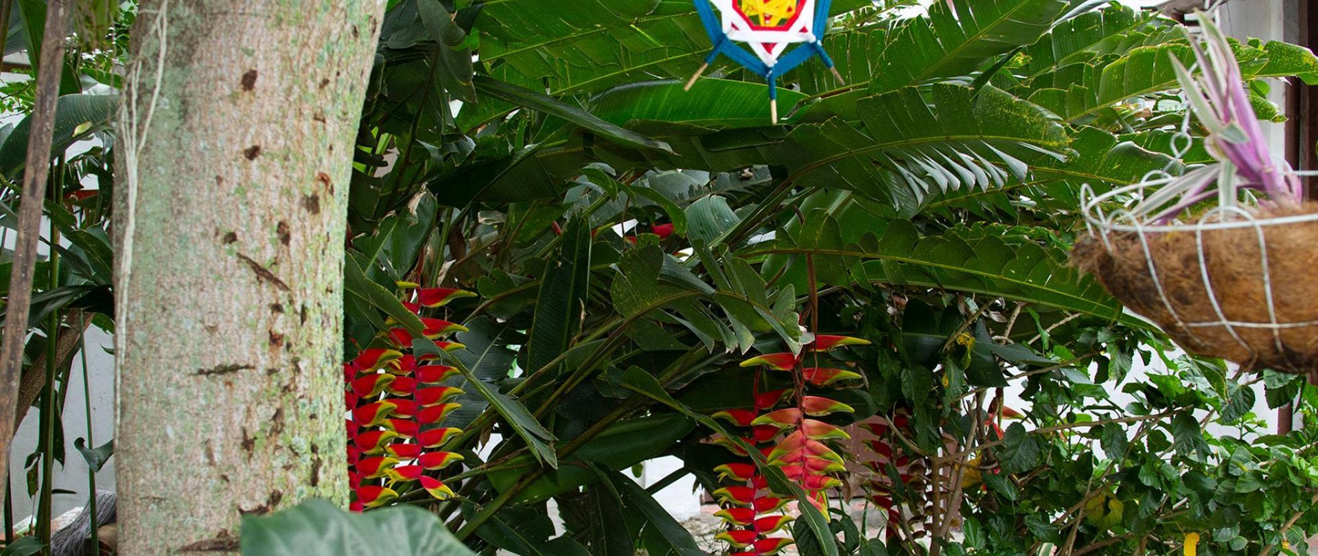 La Casona Don Juan Relax area 21.jpg